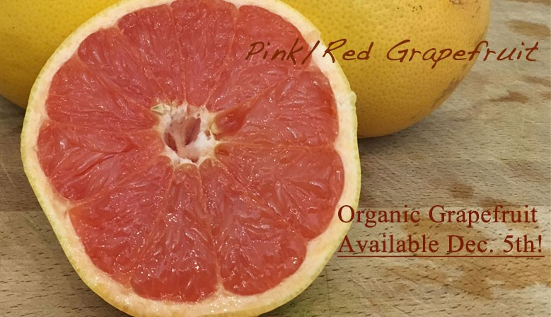 Organic Grapefruit Available December 5th!
